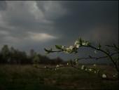 Viharos szél, zivatarok, lehűlés – ezt okozza a keddi hidegfront