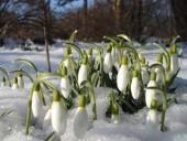 Havazással köszönt be a tavasz?!
