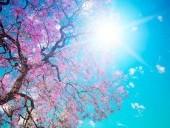 Itt az igazi tavasz!